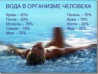voda v organizme cheloveka